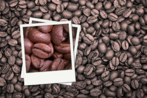 A background of monotone coffee beans with polaroid coffee bean colour photos.
